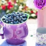 Sałatki i surówki z czarnych jagód