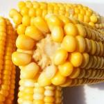 Sałatki i surówki z kukurydzą