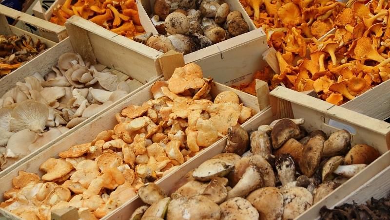 Sałatki i surówki z grzybów