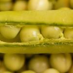 Sałatki i surówki z zielonym groszkiem